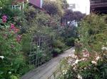 Beautiful gardens surrounding Napier Lane.